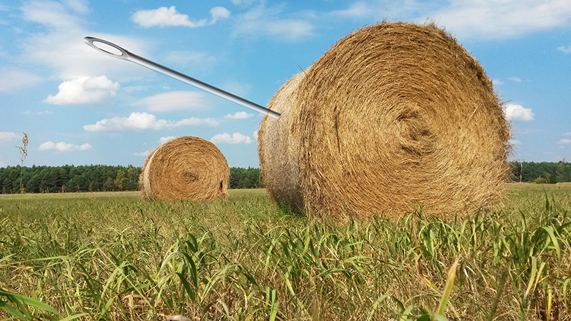 The Needle in a Haystack – Why don't we hear of more lives ruined by Cyber Security Breaches?